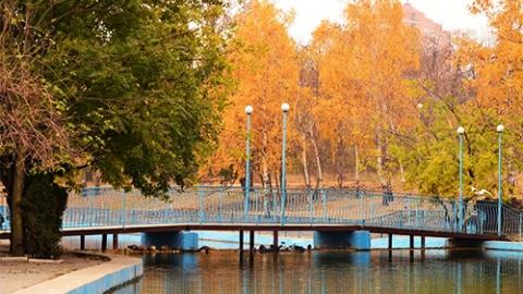 Парки, сады, скверы Одессы